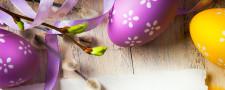 Z okazji nadchodzących Świąt Wielkanocnych życzymy Wam samych słonecznych dni oraz wielu sukcesów w życiu prywatnym i zawodowycm!